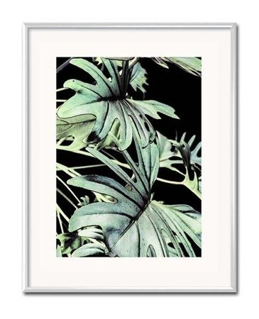 MONSTERA BLACK I, 21x26 cm